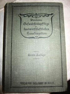 Sonstige Antiquitäten & Kunst FleißIg Gesundheitspflege Der Landwirtschaftlichen Haussäugetiere Dammann1902 Gute QualitäT