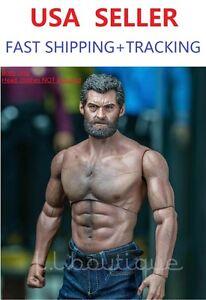 Amazon.com: Hot Toys - True Type Figure Body figurine 1/6