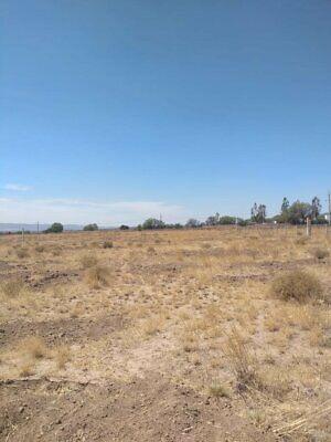 Terreno en renta en Ocampo Guanajuato