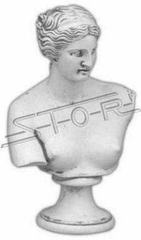 Romano Busto PERSONAGGIO FIGURE STATUA STATUE SCULTURA sculture Donna 32cm 464
