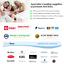 King-Single-AUSTRALIAN-Made-MERINO-100-Wool-Quilt-Doona-Duvet-500gsm-Brand-New thumbnail 5