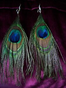 Genuine Peacock Feather Earrings 4 Long Clip On By Request