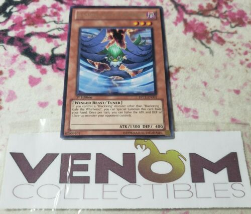 Gale the Whirlwind DP11-EN001 Rare 1st Edition YuGiOh Blackwing 1x M//NM