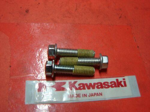 NOS OEM Kawasaki KX250 KXT250 KX500 BOLT QTY3 92002-1609