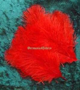 50-kleine-rote-Straussenfedern-5-10-cm-basteln-Streudeko