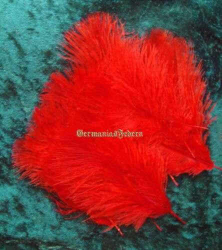 50 kleine rote Straußenfedern  5-10 cm basteln Streudeko