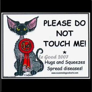 Devon-Rex-Cat-art-signs-show-pen-2-original-design-painting-by-Suzanne-Le-Good
