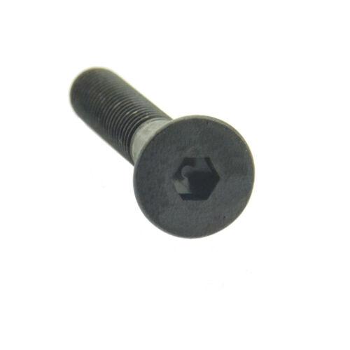 Vis à tête cylindrique ISO 10642 08.8 acier Blank M 5-M 6
