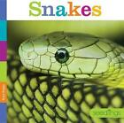 Snakes 9780898128888 by Kate Riggs Paperback