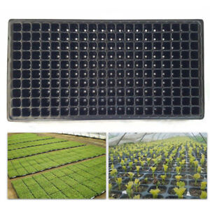 200-Cell-Seedling-Starter-Tray-Seed-Germination-Plant-Propagation-PLV