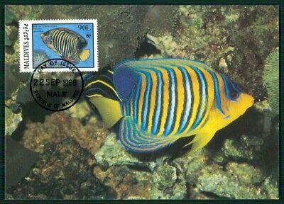 Malediven Mk 1986 Fauna Fische Fish Kaiserfisch Angelfish Maximumkarte Mc En27 Clear-Cut-Textur
