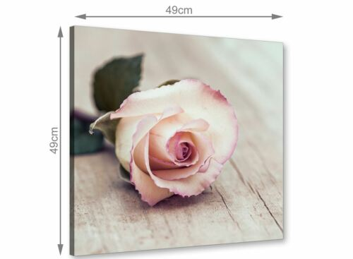 1s278s Cream  Canvas Modern 49cm Square Vintage Shabby Chic French Rose