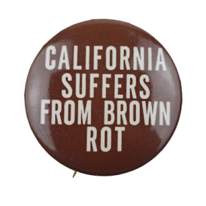 California-Suffers-From-Brown-Rot-Political-Campaign-Pin-Button-Pinback