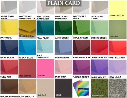 Any Colour//Card A.e Sea//Ocean//Water 9 Coral Reef//Seaweed Die Cuts