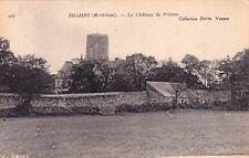 BILLIERS 258 le château de prières coll david