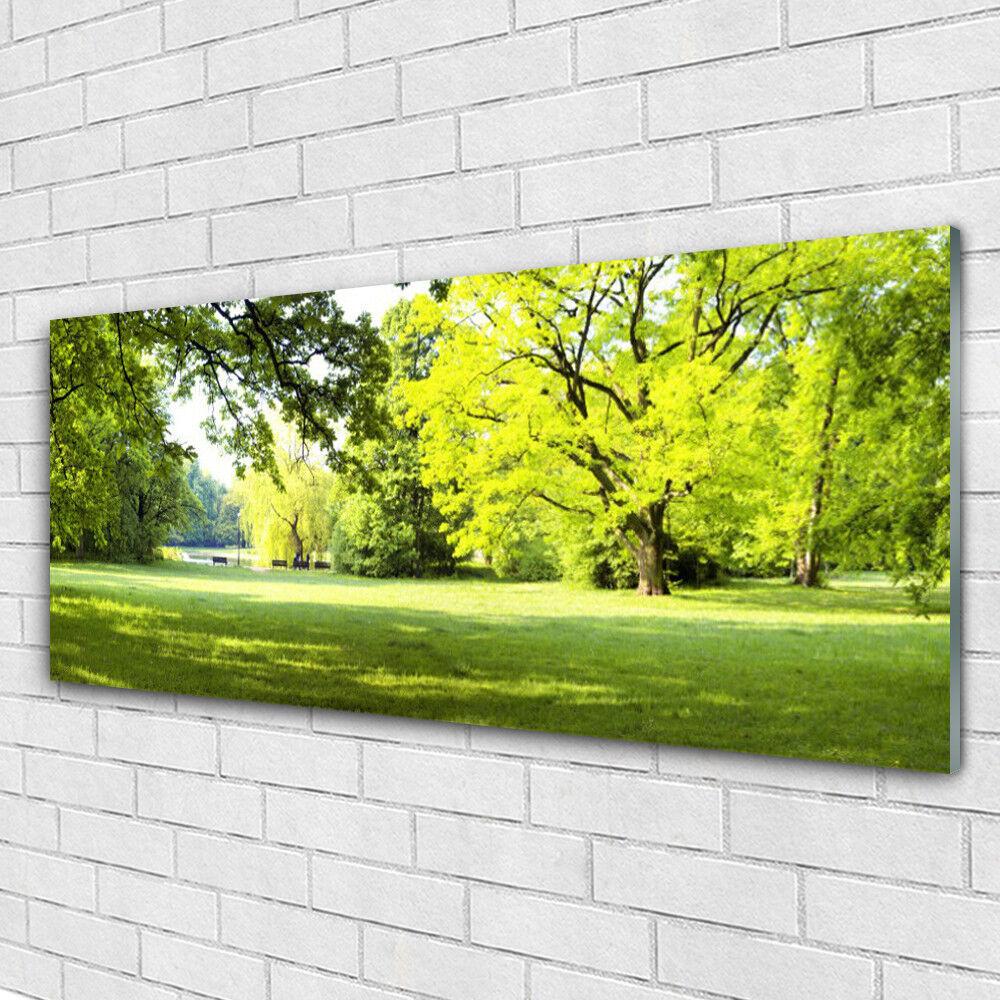 Acrylglasbilder Wandbilder Druck 125x50 Gras Bäume Natur