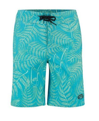 Animal Lagoona Kids Board Swim Pantaloni cortiBluebird Blu