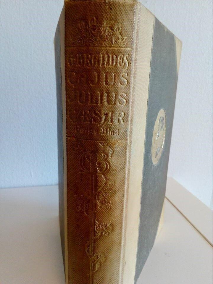 Cajus Julius Cæsar Første Bind, Georg Brandes, emne: