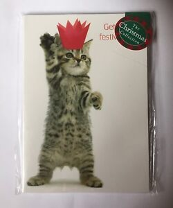 039-Boogie-Woogie-Kitten-039-Cute-Tabby-Cat-Dancing-12-small-Christmas-cards-SALE