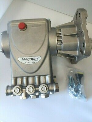 "Magnum 1/"" Shaft 4000 PSI Pump Bare No Unloader"