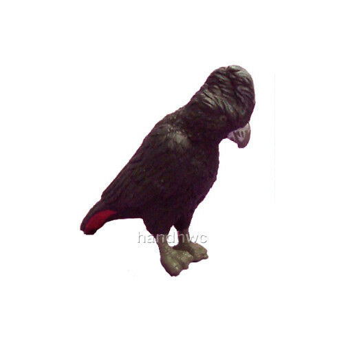 NEW Science /& Nature 75382 Small Red-tailed Black Cockatoo Bird Model Toy
