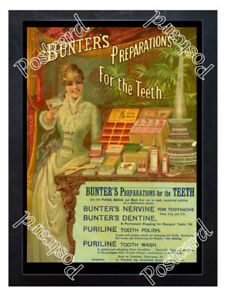 Historic-Bunter-039-s-Preparations-For-The-Teeth-1880s-Advertising-Postcard