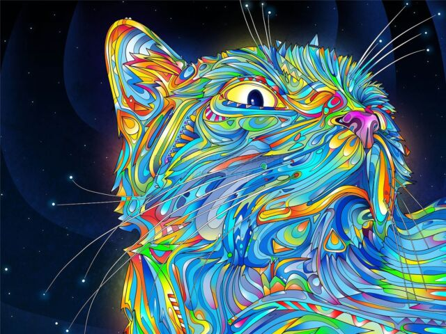 PRINT PAINTING DRAWING TRIPPY CAT SPACE WHISKERS COLOURFUL SURREAL NOFL0065