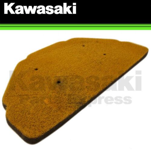 NEW 1998-2008 GENUINE KAWASAKI NINJA ZX-6R ZZR600 AIR FILTER 11013-1274