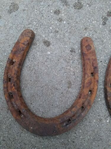 Real Horse Shoe Rusted Good Luck Horseshoe Vintage Rusty HERRADURA DE CABALLO