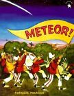Meteor by Patricia Polacco (Paperback)