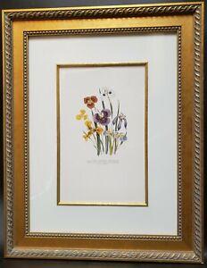 Hand Painted Iris Etching Art Print Custom Framed 29x23 Botanical Floral
