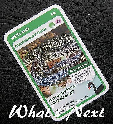 Free Post Woolworths /</<AUSSIE ANIMALS/>/> Card 87//108 REEF Manta Ray