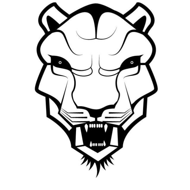 ANGRY TIGER FACE CAR DECAL STICKER