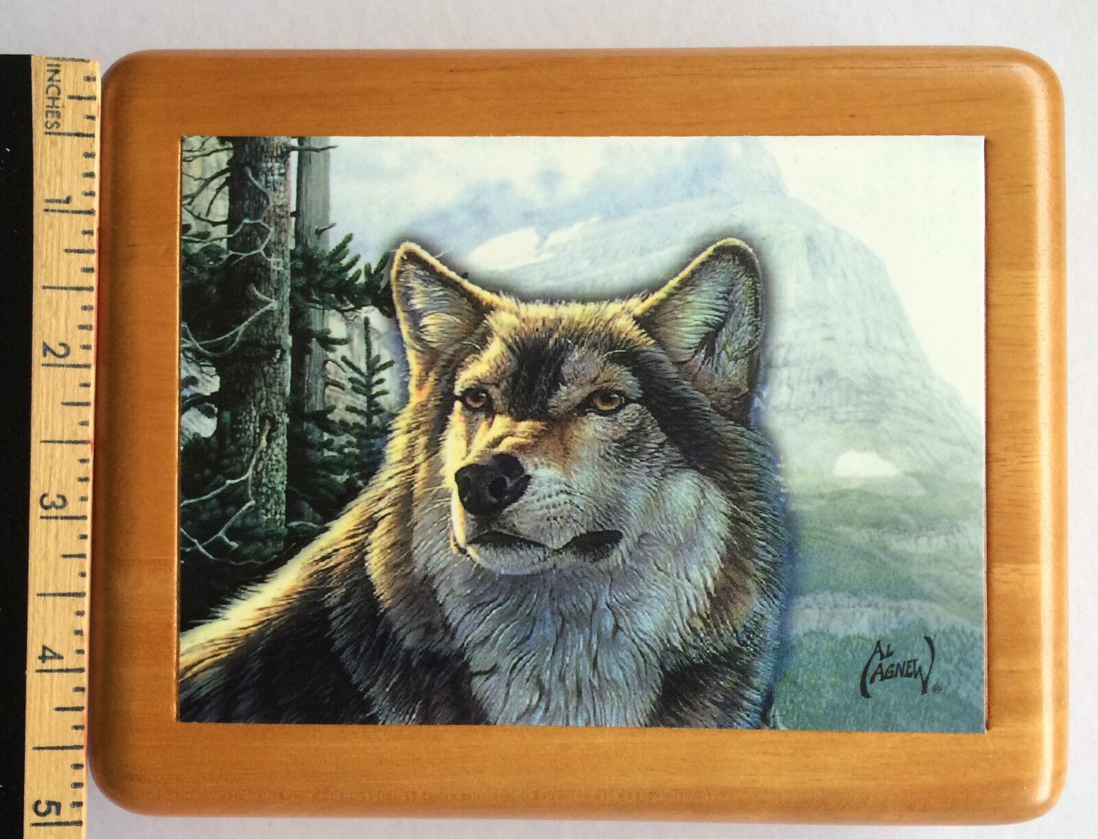 WOLF   ~LUPE    ~   JEWELED /& ENAMEL TRINKET BOX ~ BOUTIQUE MINIATURE 61165