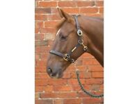 Hy Leather Head Collar Quality For Horses Adjustable Black Or Brown All Sizes