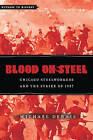 Blood on Steel: Chicago Steelworkers and the Strike of 1937 by Michael Dennis (Paperback, 2014)