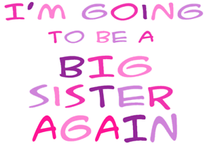 I/'M THE BIG SISTER A5 IRON ON TRANSFER A5  BIG SISTER AGAIN  T SHIRT TRANSFER A5