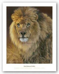 Power and Presence ART PRINT African Lion by Joni Johnson-Godsy 19x13 Poster
