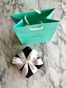 AUTHENTIC-Tiffany-amp-Co-Suede-Box-with-White-Ribbon-and-Tiffany-Bag-L9