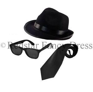 68af6e0fba561 Blues Brothers chapeau lunettes de soleil noir cravate costume ...