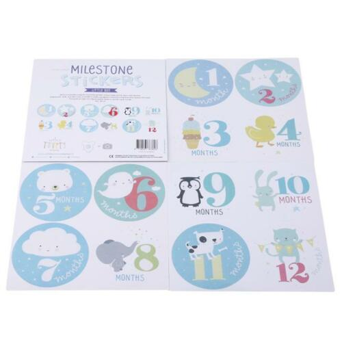 Pearhead First Year Monthly Milestone Felt Animal Photo Sharing Baby Belly G