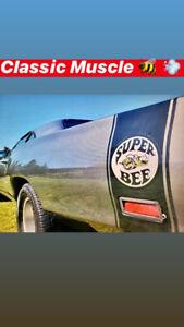 RARE! 1969 Dodge Super Bee for Sale!
