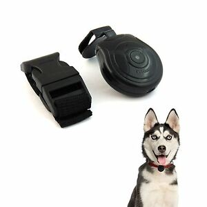 Pet-Cam-Camera-Dog-Cat-Record-Finder-Wireless-Collar-Pets-Eye-View-ID-Tag