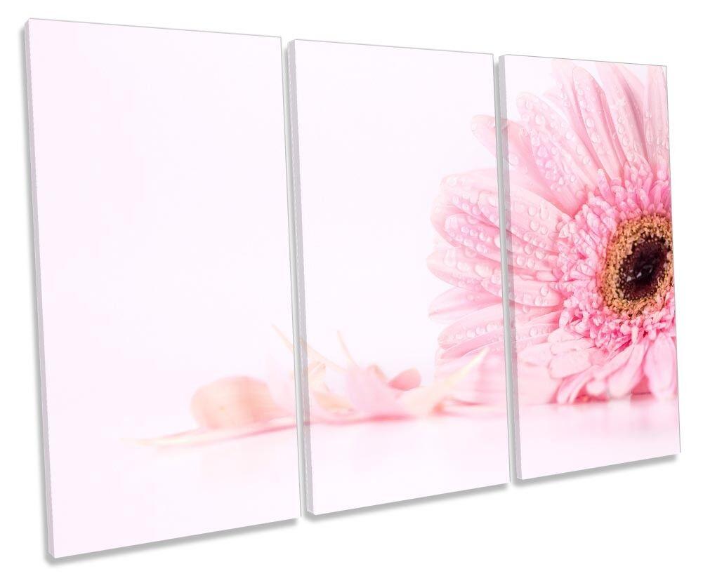 Rosa Floral Daisy Flower Flower Flower Framed TREBLE CANVAS PRINT Wall Art 7da22e