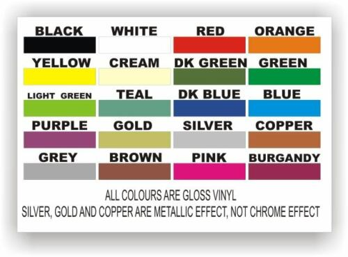 Side /& Windscreen Number//Name Fluorescent Car Sticker Graphics Trackday set pack
