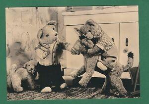 tapete zoo hund teddy - photo #23