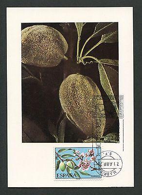 AnpassungsfäHig Spanien Mk 1975 Flora FrÜchte Fruits Fruit Carte Maximum Card Mc Cm D3754 Briefmarken Maximumkarten