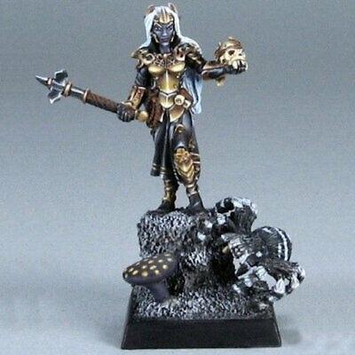 Shaern Female Antipaladin Dark Heaven Legends