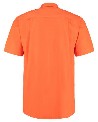 XL Kustom Kit Men's Button Down Collar Short Sleeve Orange Shirt L S 2XL,