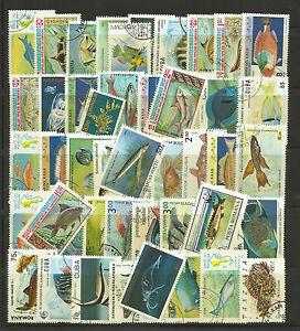 FISH-MARINE-LIFE-Packet-Collection-100-Different-WORLD-Stamps